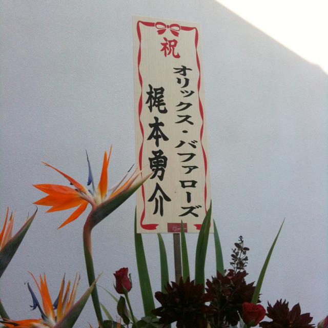 Kajimoto.jpg