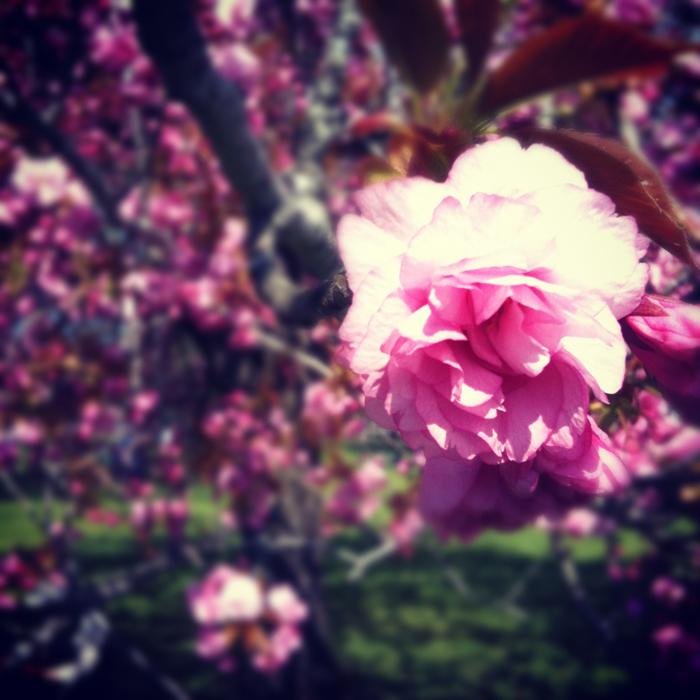 SASAYAMA_BLOG_05.05-03.jpg