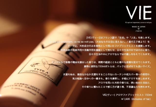 VIE_Blog.jpg